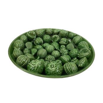 Productfoto schaal groen fruit